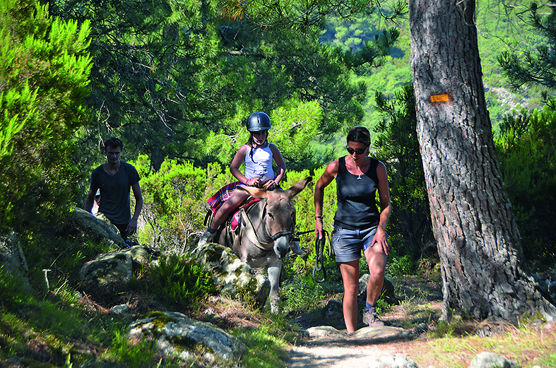 Eselwandern im Alta Rocca